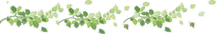 leaf_line